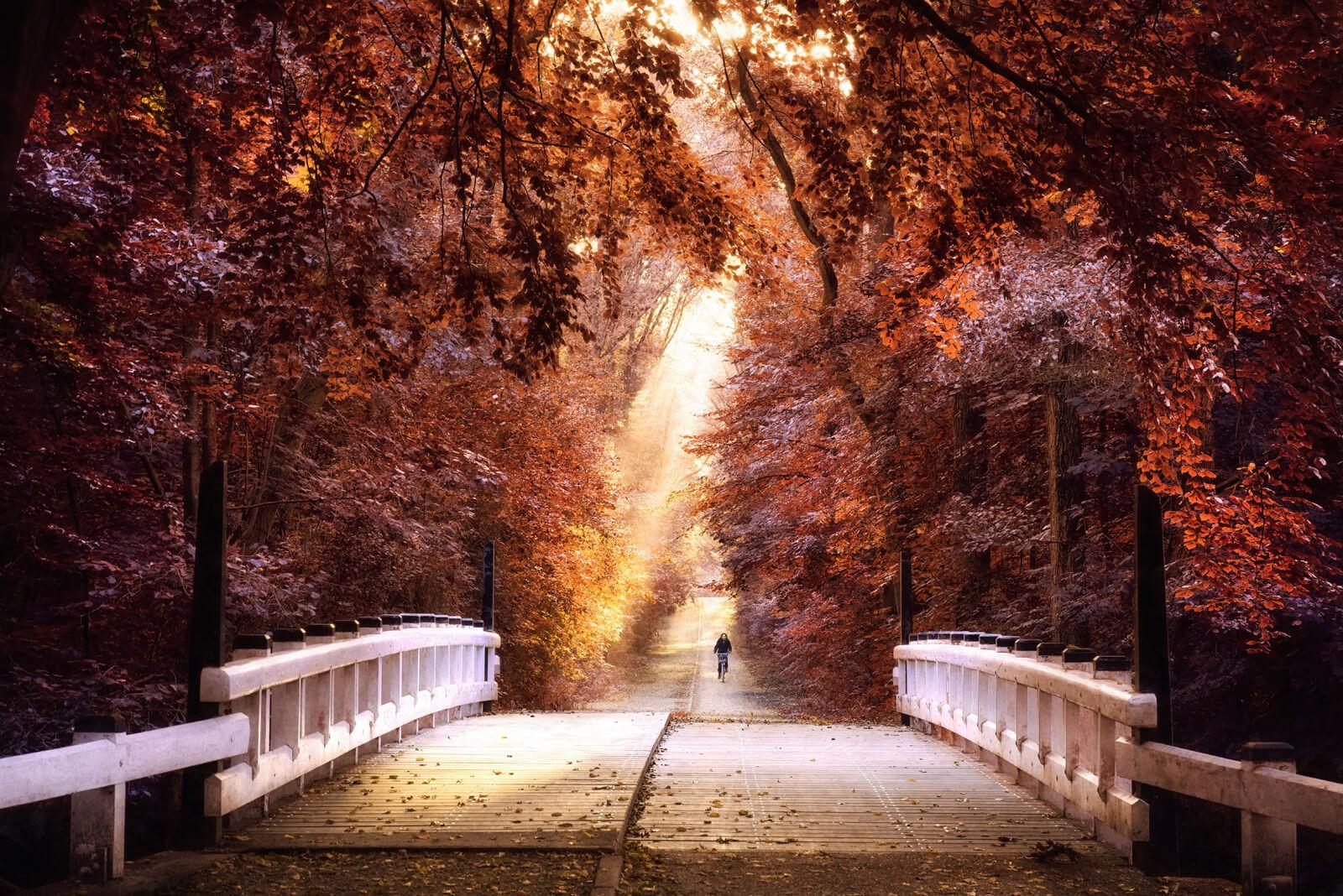 Taking the Bridge to Fall