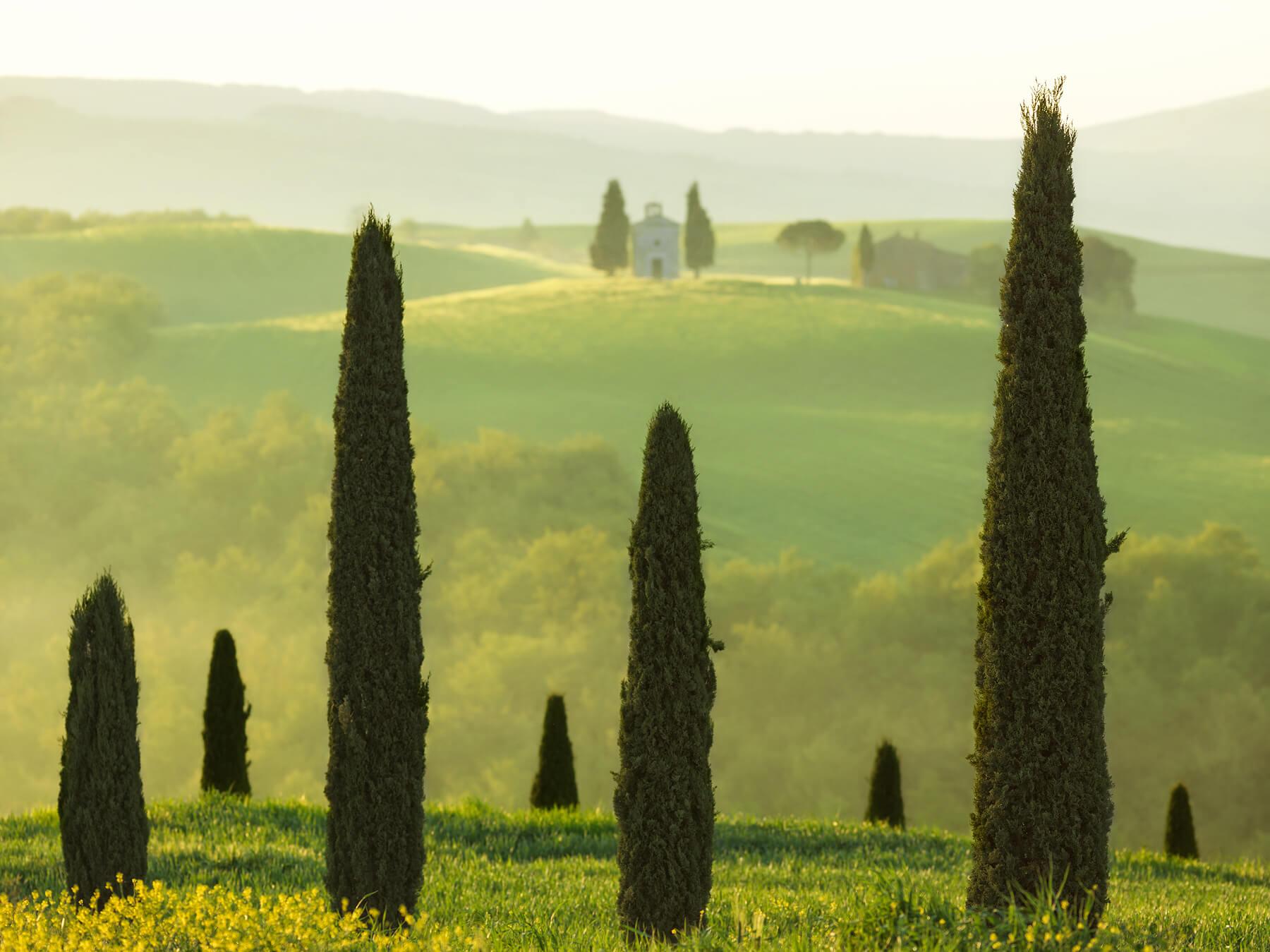 Tuscan Temple