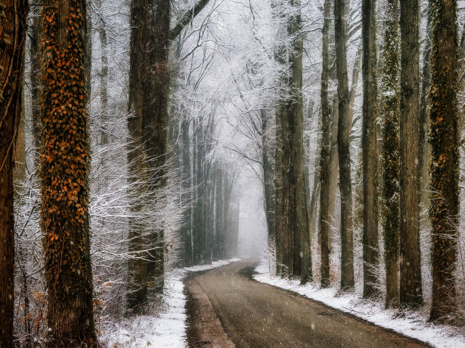 Winter in Velhorst