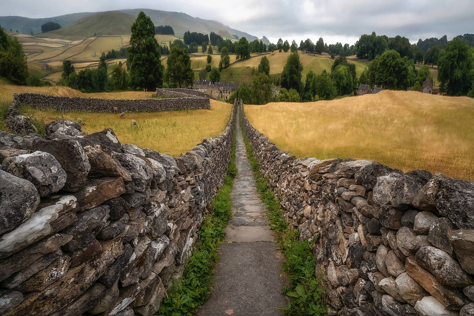 Yorkshire Dales Paths II