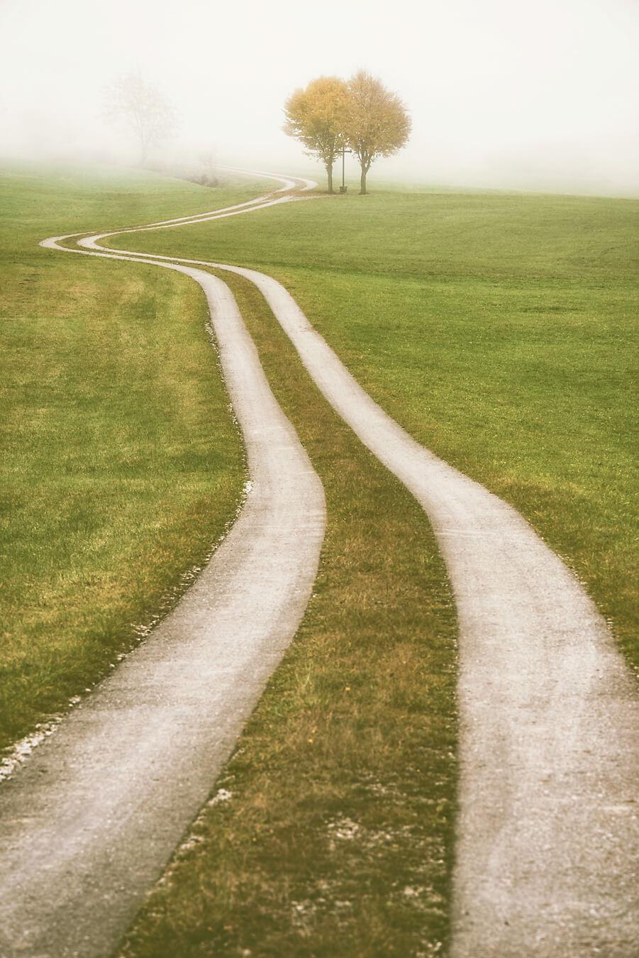 Winding Path Bavaria
